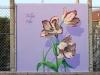 01_tulipe
